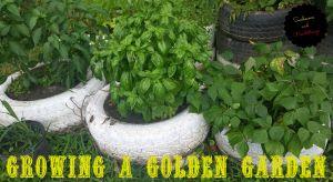 garden title
