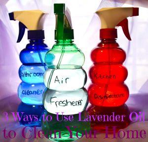 homemade lavander oil recipes (1)